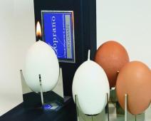 eggmate-candle.JPG
