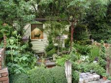 a-shady-courtyard.jpg