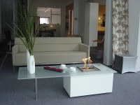 ecosmart-fire-coffee-table.jpg