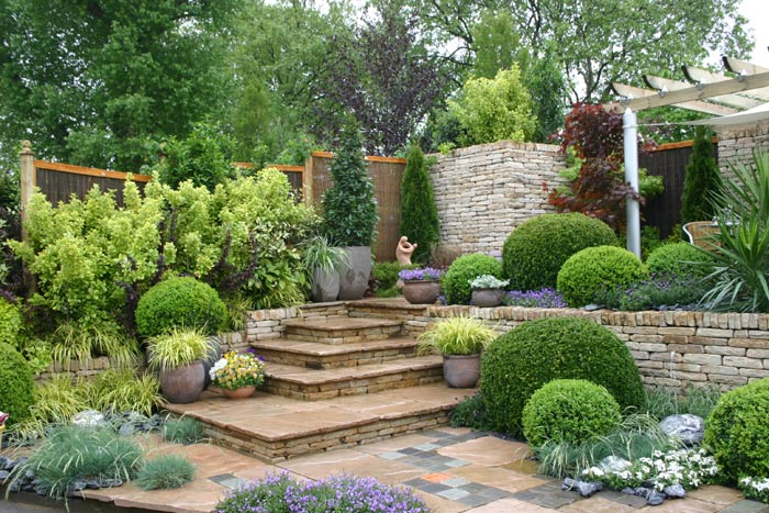Фото огорода частного дома 42