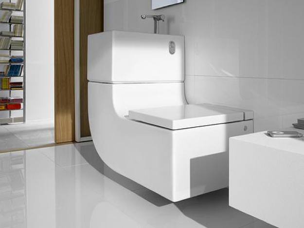 W+W Toilet And Sink